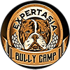 EXPERTASIA Bully Camp Logo